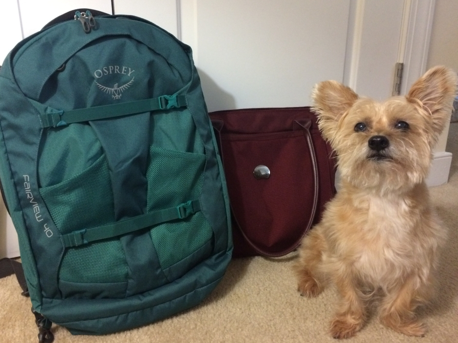 Osprey Fairview 40, Delsey montmartre tote and Yorkipoo